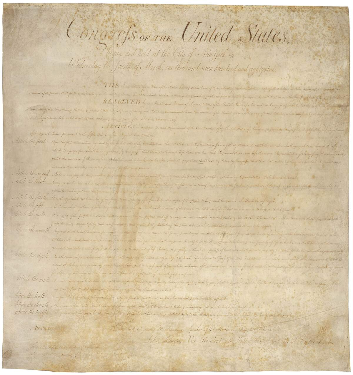 Image for Bill of Rights Day