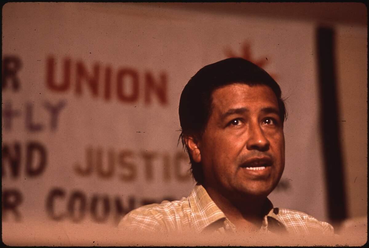 Image for César Chávez Day