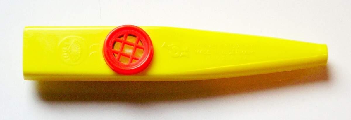 Image for National Kazoo Day