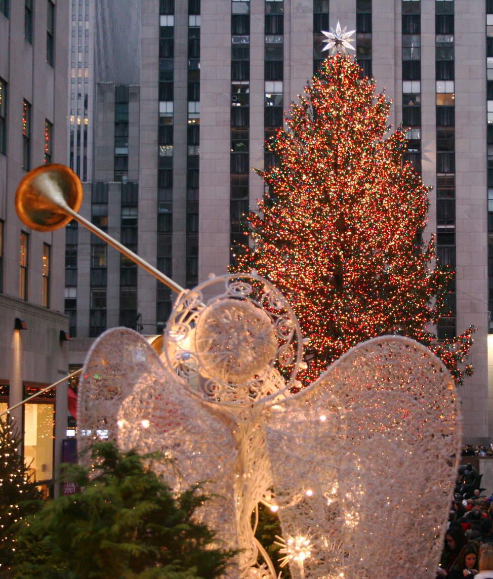 Image for National Christmas Tree Day
