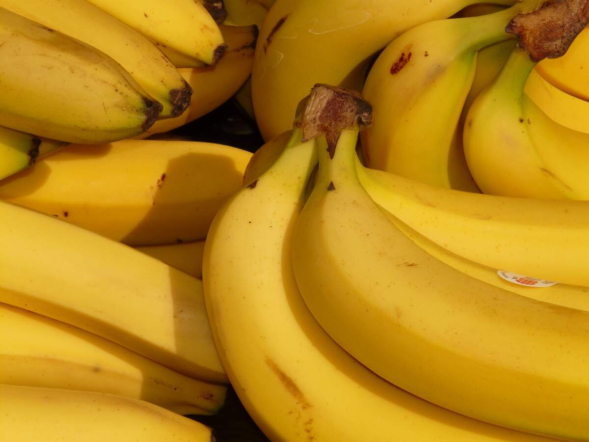 Image for National Banana Lovers Day