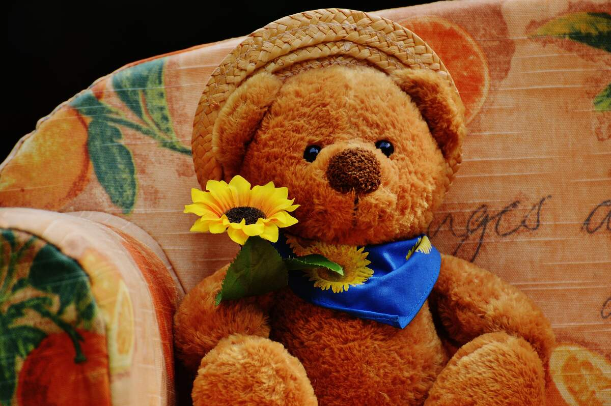 Image for National American Teddy Bear Day