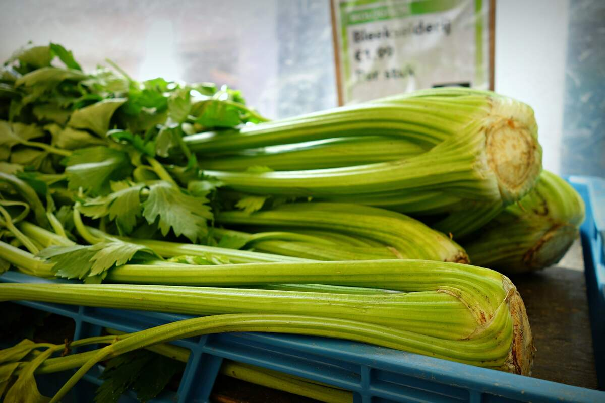 Image for National Fresh Celery Month
