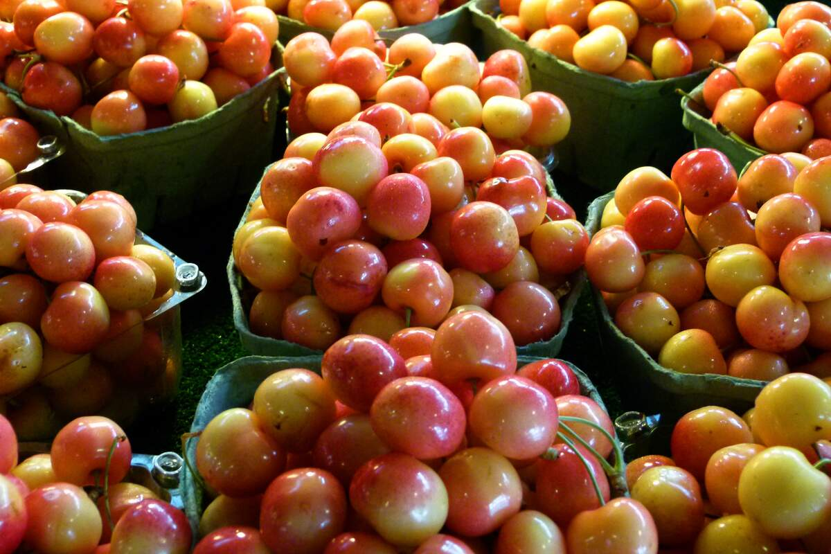 Image for National Rainier Cherries Day