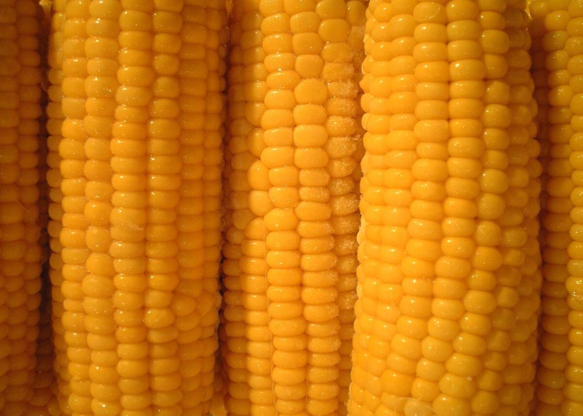 Image for Corn on the Cob Day