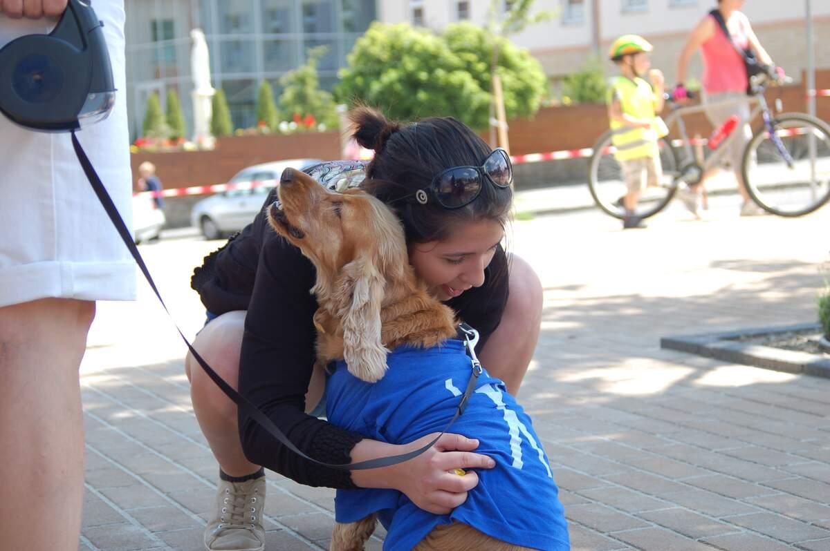 Image for National Hug Your Dog Day