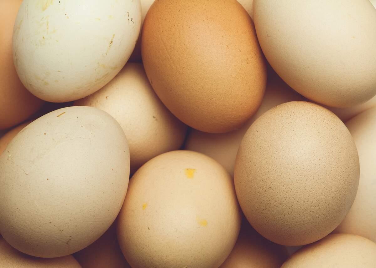 Image for National Egg Month