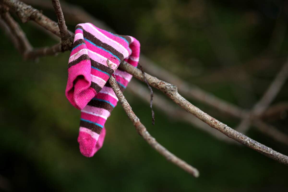 Image for Lost Sock Memorial Day