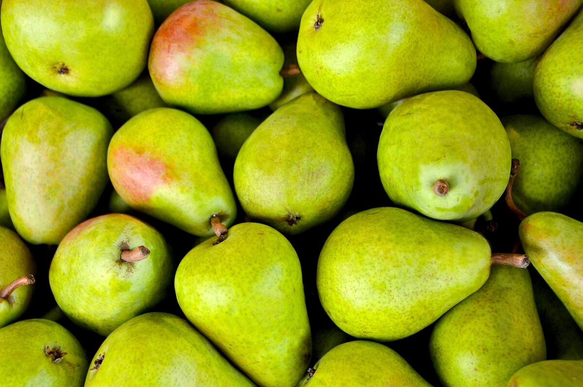 Image for National Pear Month