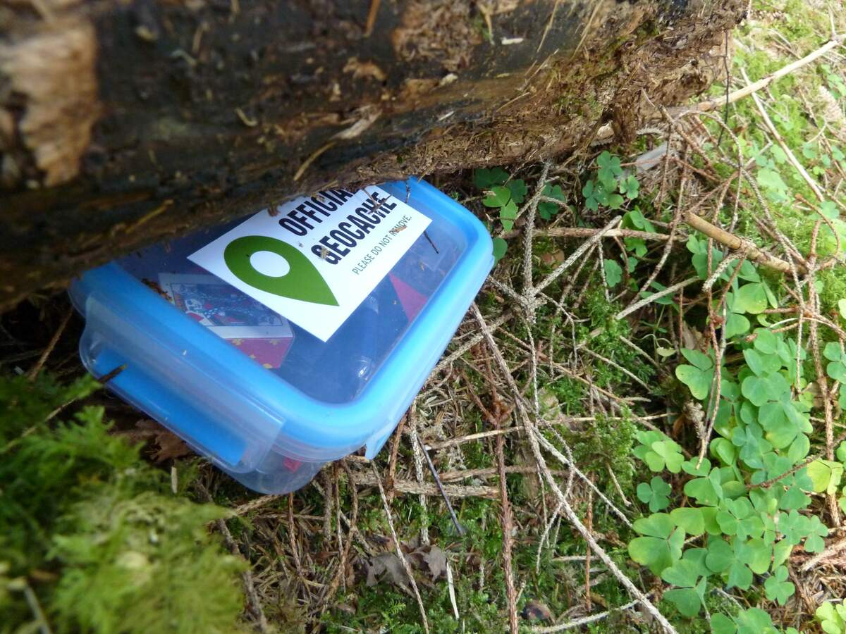Image for International Geocaching Day