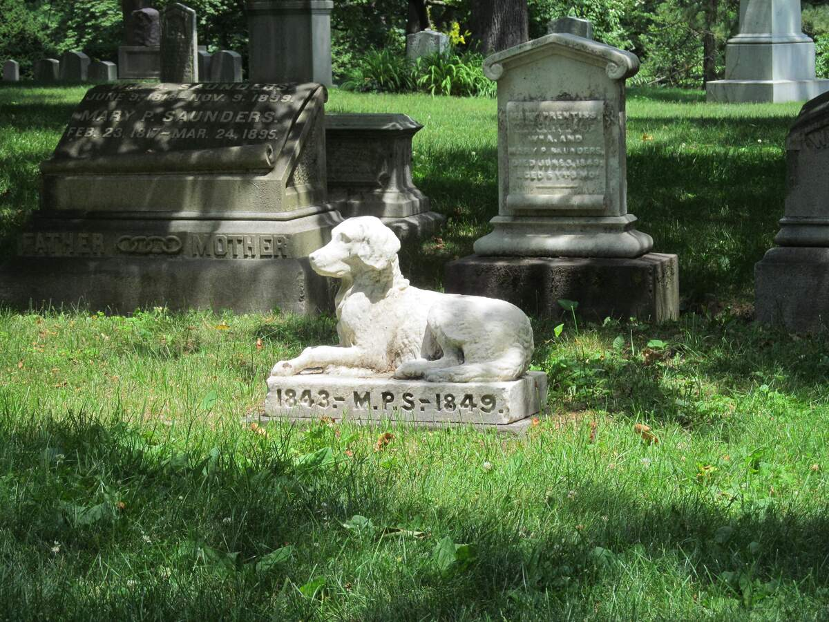 Image for Plan Your Epitaph Day