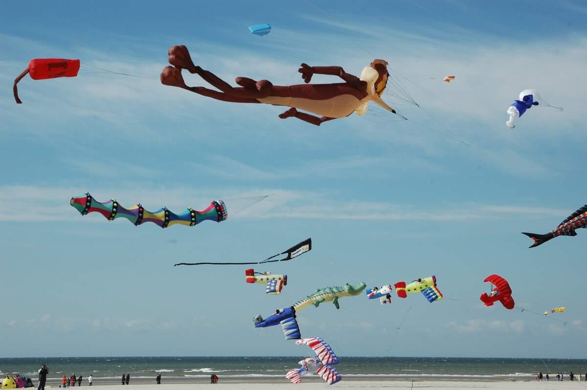 Image for National Kite Flying Day