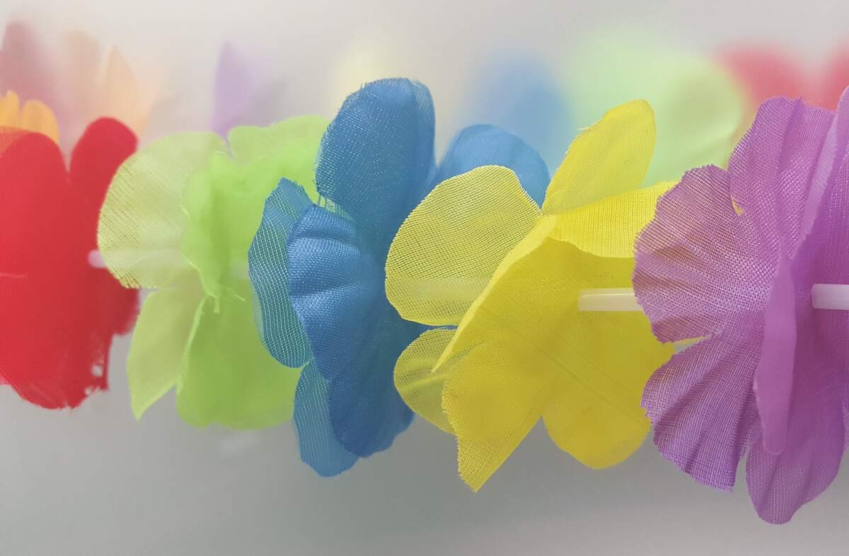 Image for Lei Day