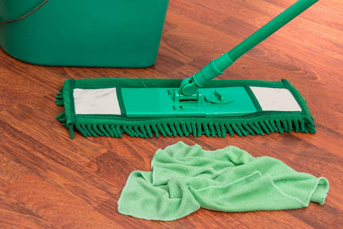 Image for National Professional House Cleaners Day