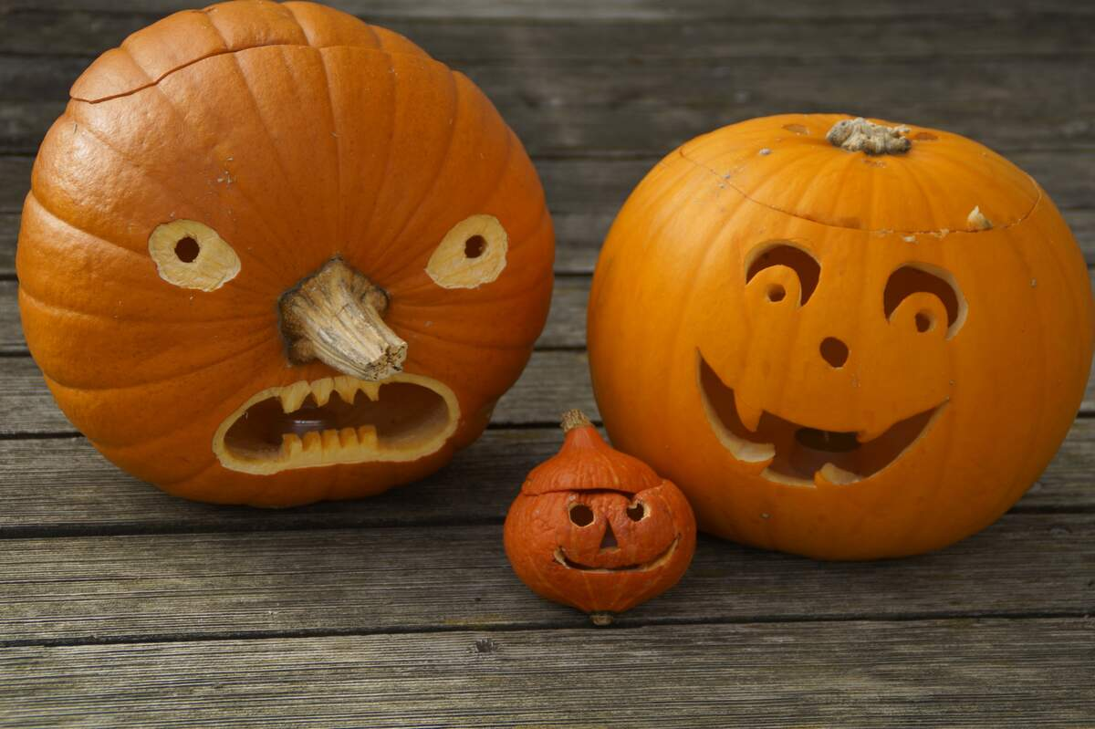 Image for Carve a Pumpkin Day