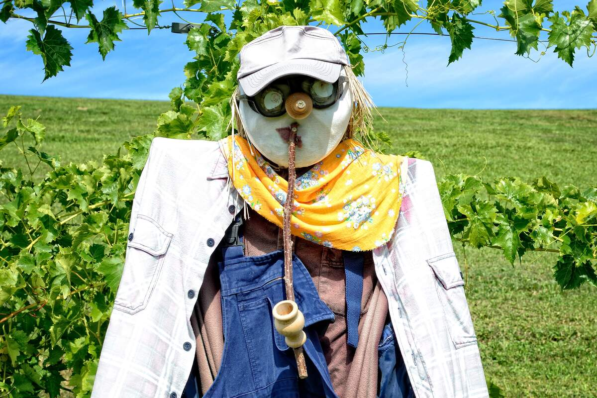Image for National Build a Scarecrow Day