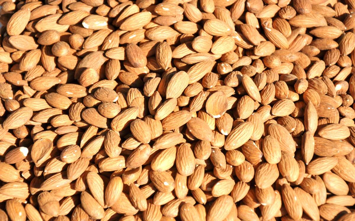 Image for National Almond Day