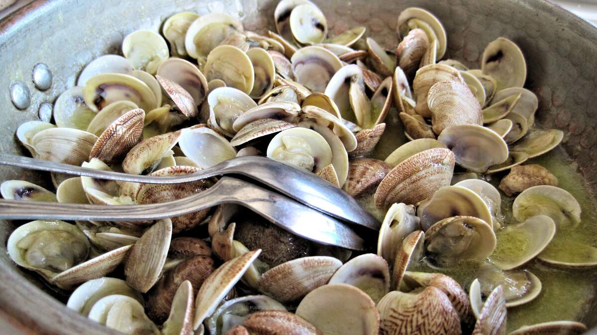 Image for National Fried Clam Day