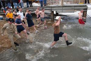 Image for Polar Bear Swim Day