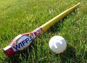 Image for National Wiffle Ball Day
