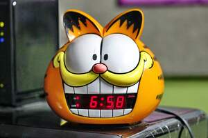 Image for Garfield the Cat Day