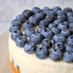 Image for National Blueberry Cheesecake Day