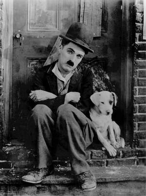 Image for National Pets in Film Day