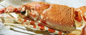 Image for National Crabmeat Day