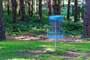 Image for National Disc Golf Day