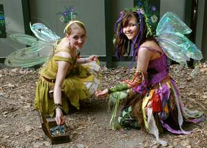 Image for International Fairy Day