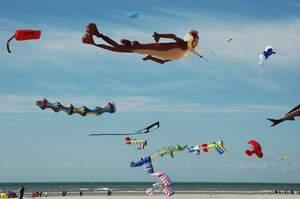 Image for International Kite Day