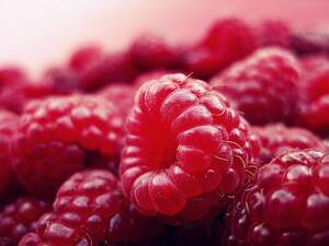 Image for National Raspberry Bombe Day