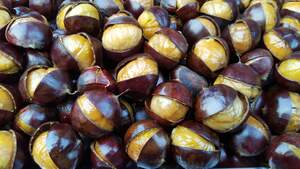 Image for Roast Chestnuts Day