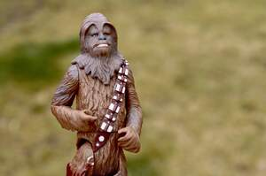 Image for National Kiss a Wookiee Day