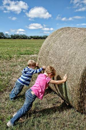 Image for National Farm Safety Day for Kids