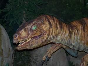 Image for National Velociraptor Awareness Day